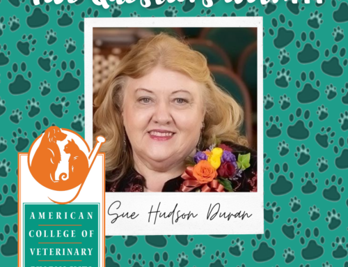5 Questions With… Sue Hudson Duran
